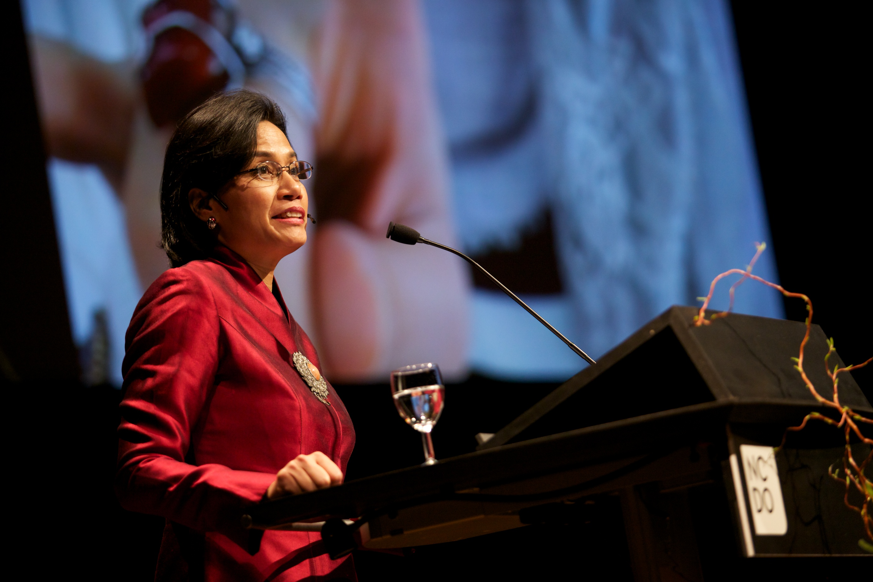 Menteri Keuangan RI Sri Mulyani (Dok. wikimedia.org)