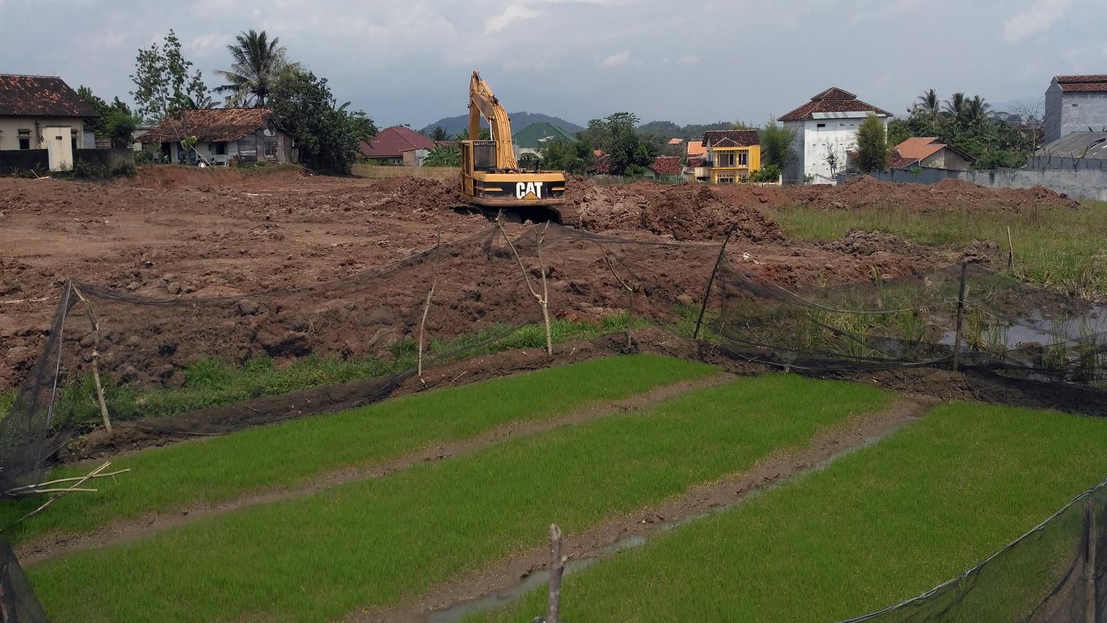 Alat berat tengah melakukan pengurukan lahan sawah di Kelurahan Pringsewu Selatan, Kecamatan Pringsewu, Kabupaten Pringsewu. Lebih kurang satu hektare lahan sawah produktif di lokasi tersebut bakal dijadikan lokasi pembangunan perumahan oleh pihak pengembang. (Lampungnews/Anton Nugroz)