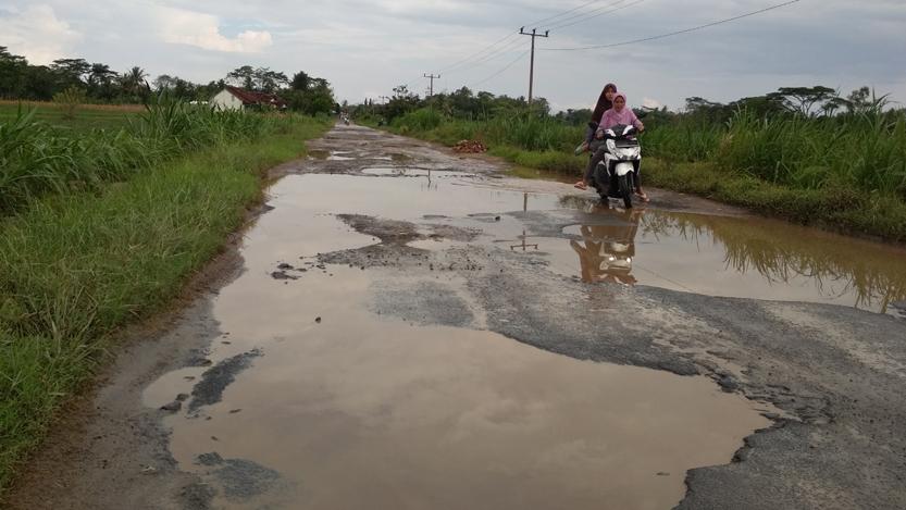 Kondisi jalan di Kelurahan Dono Arum, Lampung Tengah. (Lampungnews/Davit)
