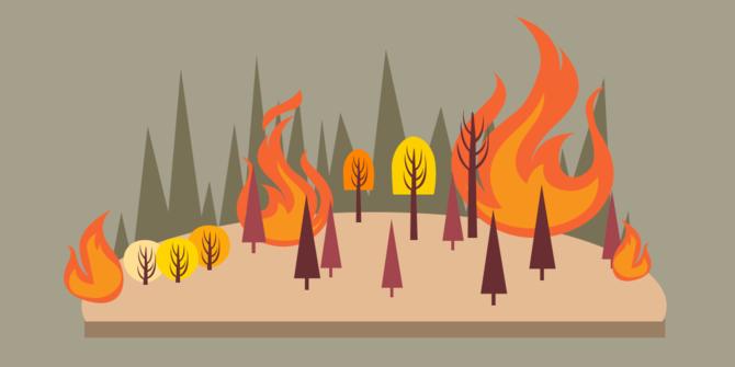 Ilustrasi kebakaran (Ist)