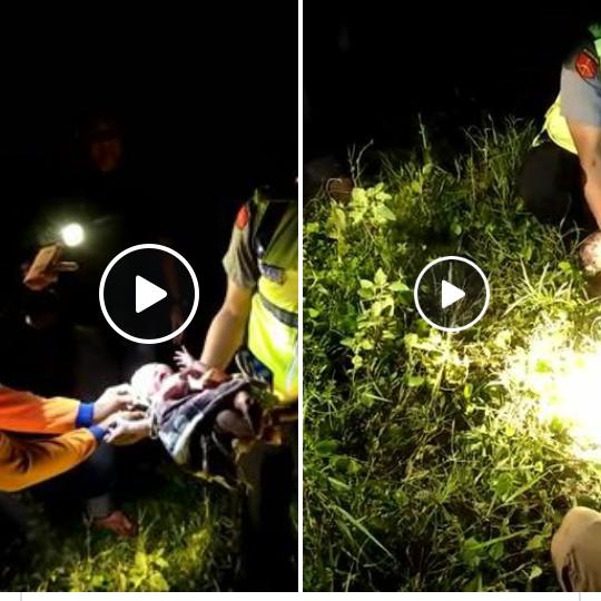 Penemuan Bayi di luar pagar jalan tol Cipali. (Facebook)