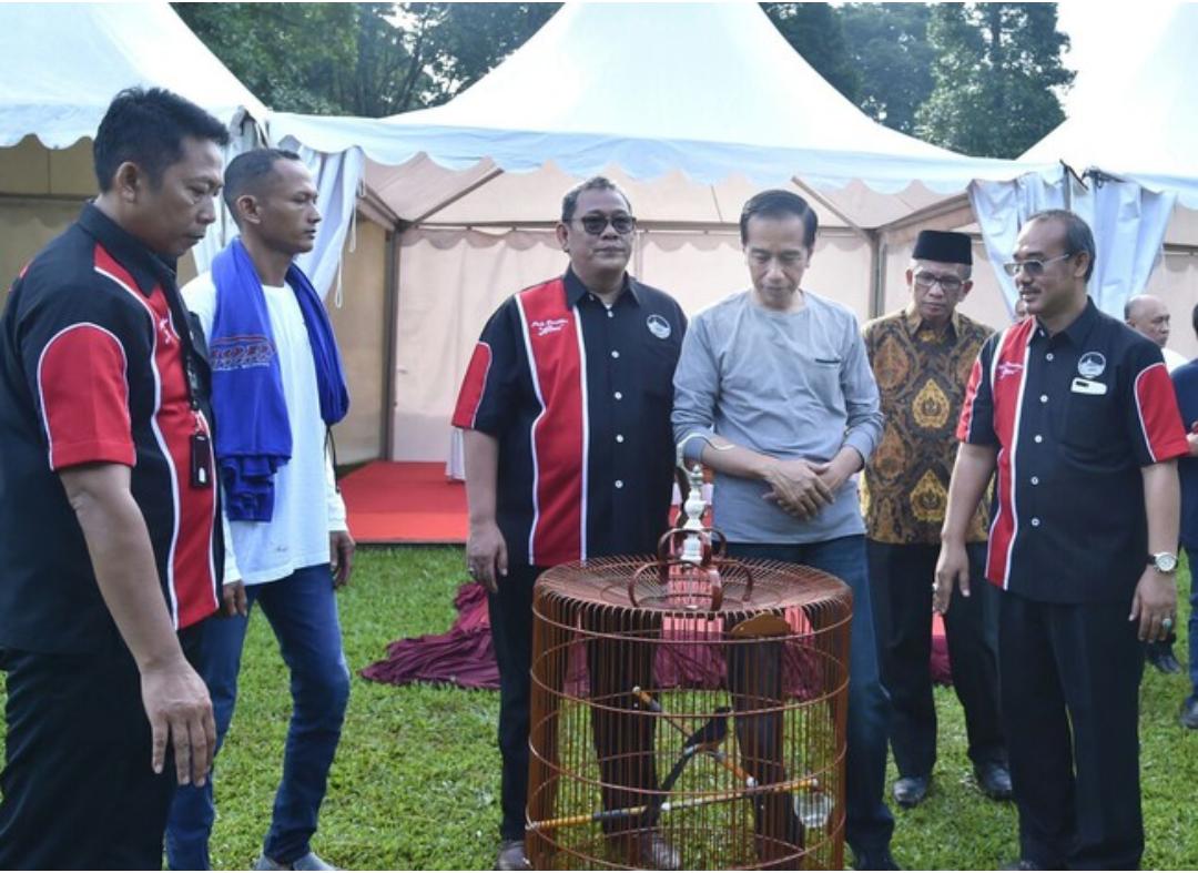 Presiden Jokowi Ikut Lomba Burung Murai (Biro Setpres)